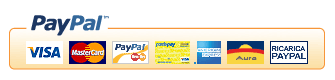 Email PayPal Payments